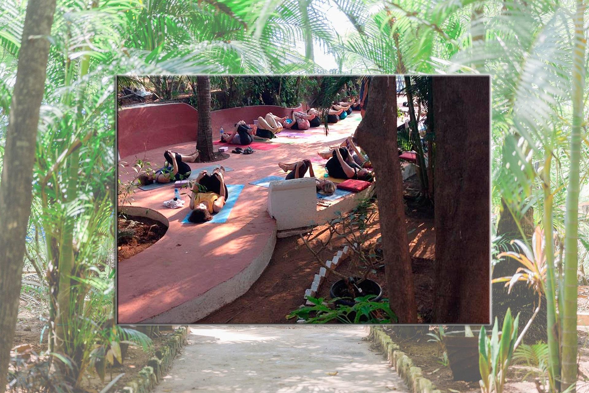 Villa Rivercat Mandrem Goa Yoga and Activities
